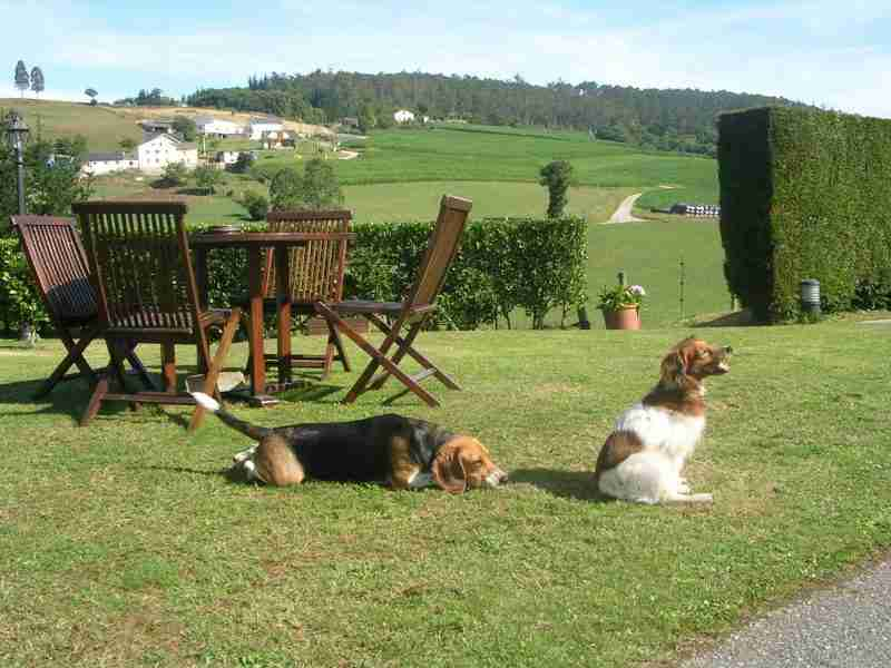 c0a04adf45108 Casa rural en el Occidente de Asturias que admite perros
