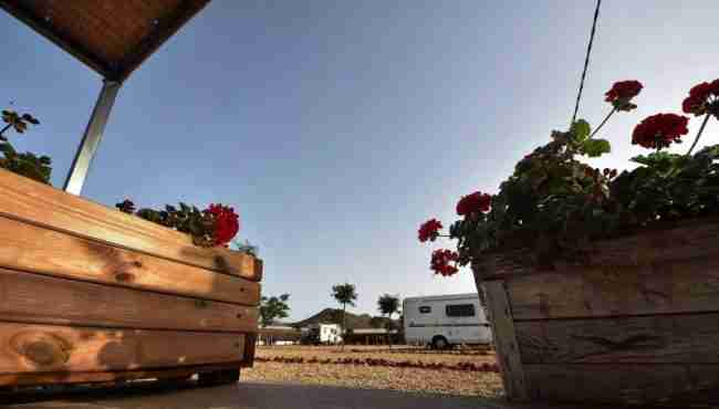 Entrevista Cabo de Gata Camping Park