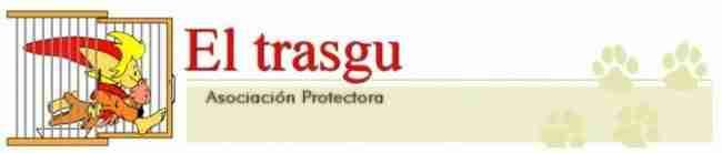 El trasgu donde adoptar perros en Asturias Vicente velasco