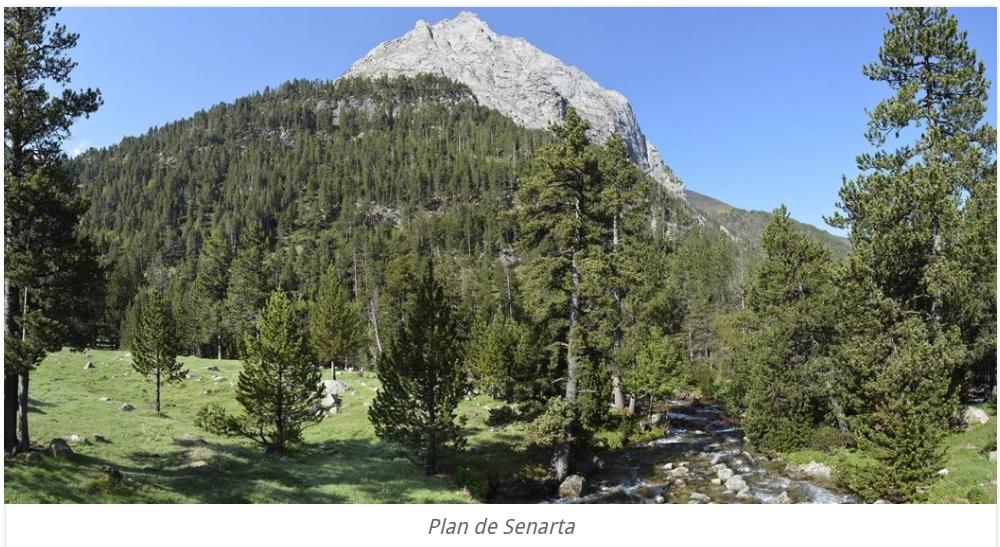 paisaje desde la zona de acampada de senarta pirineos españa